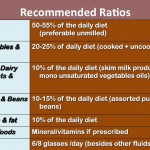 Recommended Daily Diet Ratios